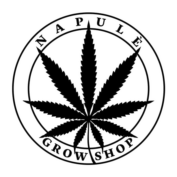 Grow Shop Napoli